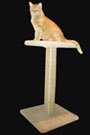 Our new 34 inch sisal cat scratching post with top perch. Great for stretching and scratching at the same time! Featuring a 32 inch hand-wrapped sisal rope post and a 16x16 inch top perch. Base is 19x19 inches for rugged stability. $59.99 is a superb deal!